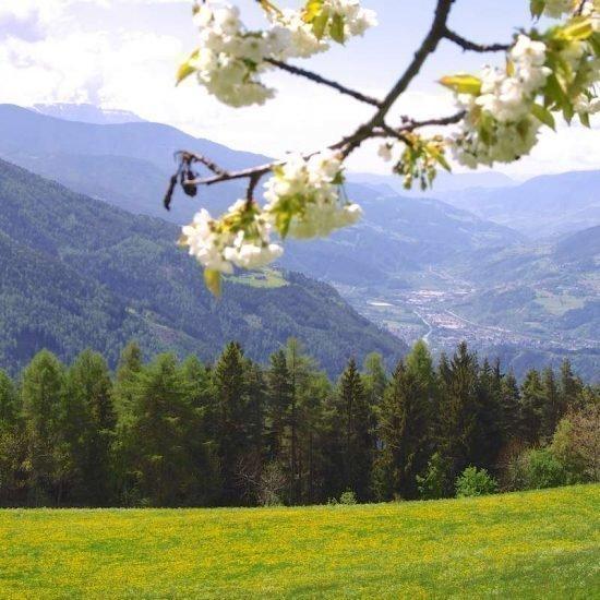 haus-talblick-luesen-suedtirol (11)